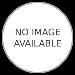 """Beretta A400 Xplor Action 20 Ga 28"""" Barrel Semi Auto Shotgun"""